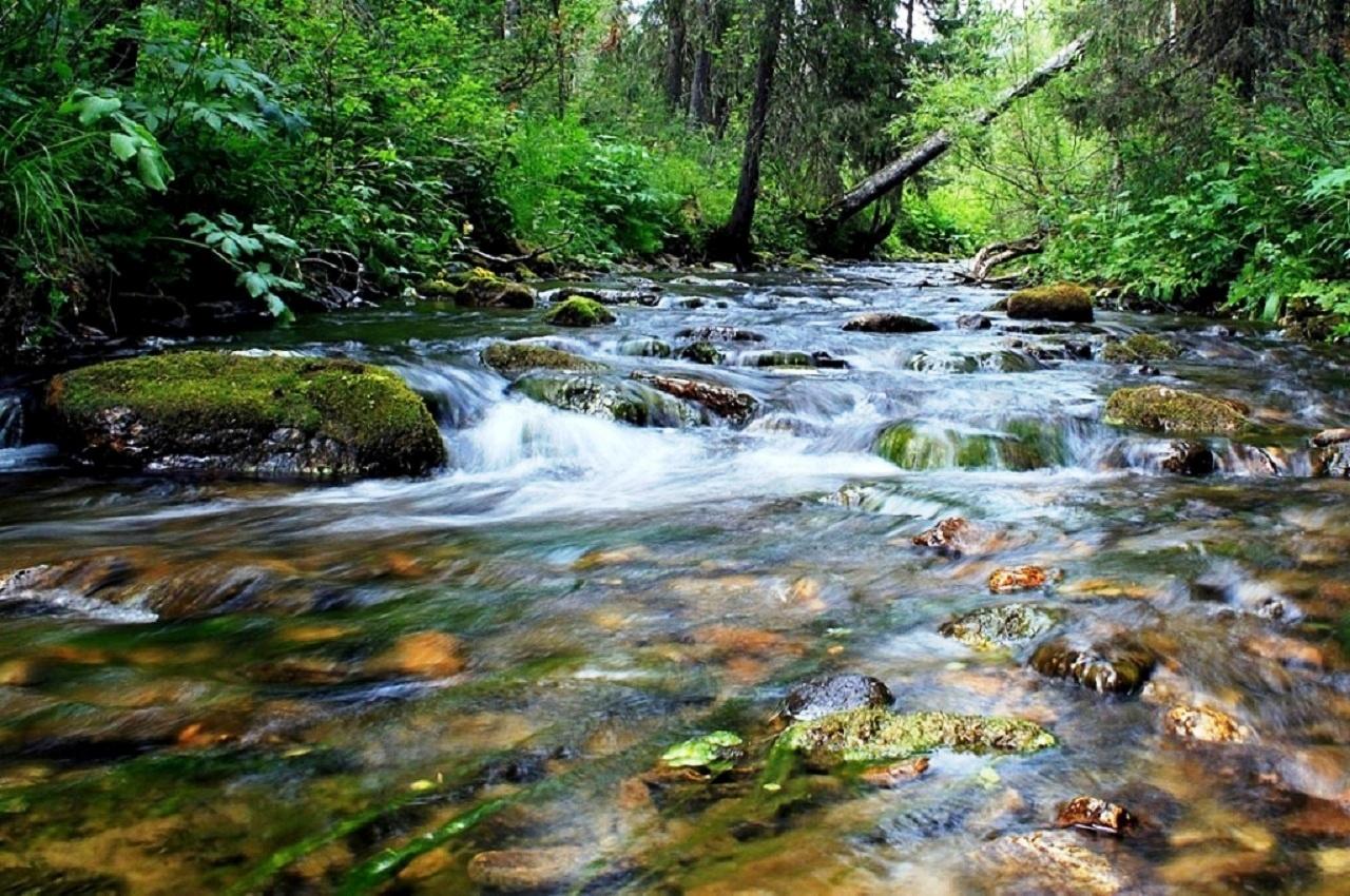 Безымянный ручей — Сочинский национальный парк