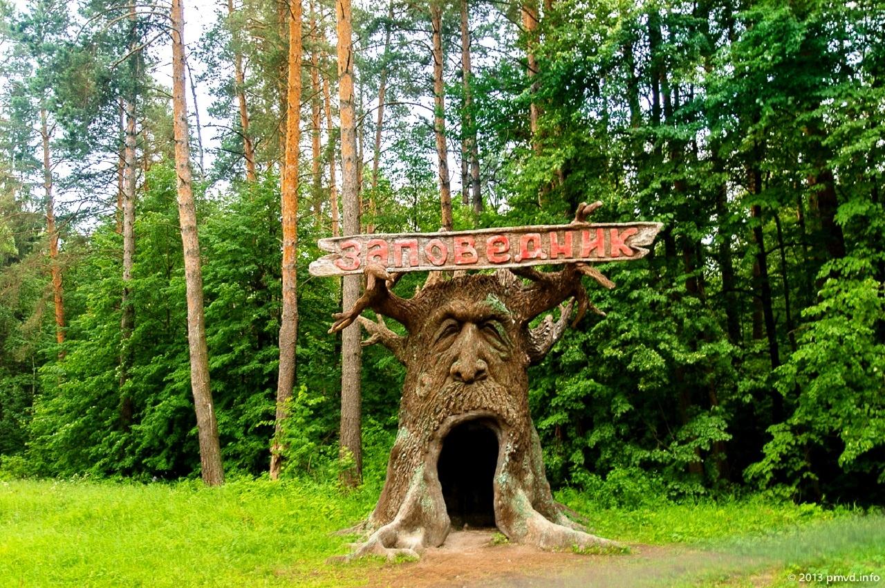 Приокско-Террасный заповедник – сокровищница Подмосковья